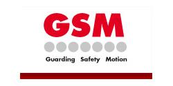 GSM America Inc.